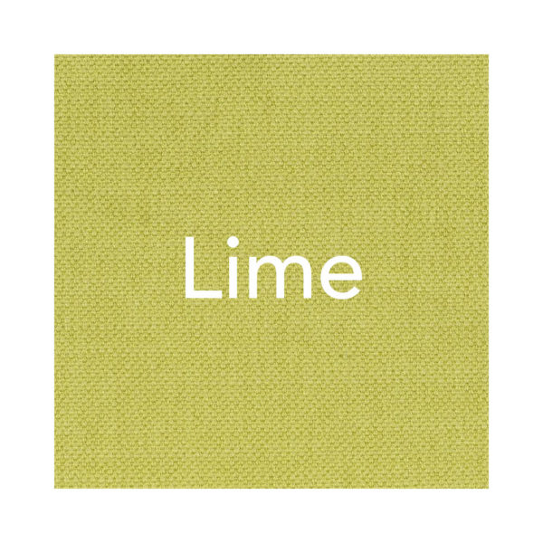 lime Paris-Texas Hundekissen